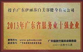2013年广东省服务业十强企业